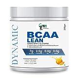 WN WORLD NUTRITION Dynamic BCAA Supplement Lean Amino Acid Powder (Tangy Orange, 250gm)