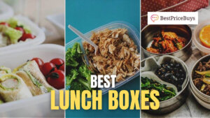 20 Best Lunch Boxes